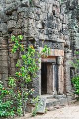 Ta Prohm of Tonle Bati (Electricity Mule) Tags: door tree stone temple ancient ruins shrine cambodia entrance phnompenh angkor wat taprohm takeo tonlebati taprohmoftonlebati