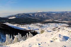 kilátás a Kakastaréjról / outlook (debreczeniemoke) Tags: winter mountain snow landscape hiking land hegy transylvania transilvania táj tájkép erdély hó tél túra rozsály kakastaréj canonpowershotsx20is gutinhegység munţiigutâi creastacocoşului igniş munţiigutin