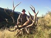 New Zealand Red Stag Hunting - Christchurch 46