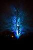 lighted tree (thdoubleu) Tags: longexposure canon nacht nrw usm landschaft efs 1022mm nordrheinwestfalen hamm langzeitbelichtung canonefs1022mmf3545usm longterm f3545 nachtfoto herbstleuchten herbstleuchten2014
