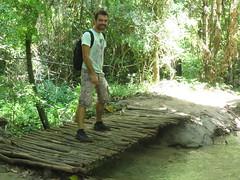 """l'aventurier dans la jungle ! <a style=""""margin-left:10px; font-size:0.8em;"""" href=""""http://www.flickr.com/photos/83080376@N03/15720922521/"""" target=""""_blank"""">@flickr</a>"""