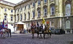 SP_A0024a Knights at Buda Castle (Andras, Fulop) Tags: cameraphone horses hungary budapest palace knights royalpalace riders budacastle lionyard oroszlanosudvar