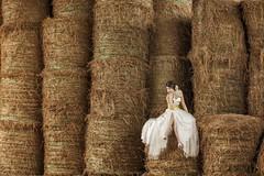 Pre Wedding (johnhophotography) Tags: wedding portrait photography album weddings weddingphotography weddinggallery