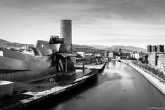 Bilbao (Mplanells) Tags: bilbao museo laria guggenheimbilbao