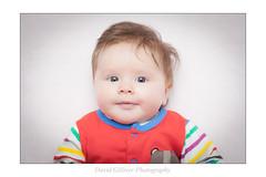 La (Pikebubbles) Tags: baby babies la newbaby davidgilliver davidgilliverphotography lamaygilliver