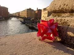 Harmony Staflow at Venice (Andrey Hechuev    ) Tags: venice reflection water paper sunny harmony acqua venise venecia venezia venedig kusudama harmonypaper staflow staflowout seriesstaflow