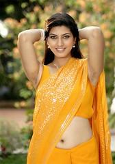Actress Sarah Sharma Hot Navel Show In Saree Stills (Tech Uday) Tags: sarah actress navel saree stills sharma