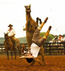 Trocando de ponta (shumpei_sano_exp6) Tags: brazil horses horse southamerica brasil caballo cheval caballos bravo cavalos pferde cavalli cavallo cavalo gauchos pferd riograndedosul pampa campanha brsil chevaux gaucho amricadosul gacho amriquedusud gachos sudamrica suramrica amricadelsur firstquality sdamerika americadelsud americameridionale