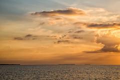 Florida_Bay_Sunrise (Ken Janes) Tags: landscape everglades