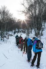 Colli Alti e Bassi di Castelluccio (Risorse Cooperativa) Tags: parco mountain snow tourism trekking wolf di snowshoeing wilderness active monti norcia castelluccio nazionale sibillini azzurri risorse ciaspolate