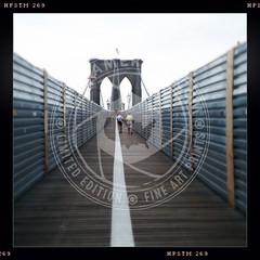 NEWYORK-1391