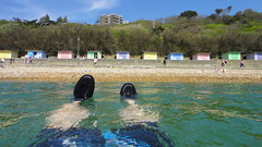 F.O.W.S.C 08/05/16 (Tesselate) Tags: beach swimming folkestone seaswimming