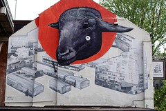 """who ewe lookin' at"" (Mr Ian Lamb) Tags: streetart art graffiti paint spraypaint publicart bykerwall ewe shipinn ouseburn stepneybank"