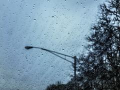 rainy drive (jojoannabanana) Tags: blue trees window rain silhouette drops driveby lamppost raindrops s100 3662016