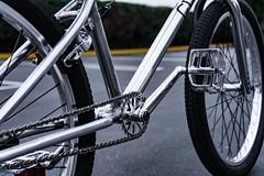 Custom Cult 24 (ATOM1_Productions) Tags: bike bmx aluminum cult 24 custom odyssey titanium polished snafu custombike 24inch chromo allchrome profileracing bikecheck bmxcruiser bmxlife 24inchcruiser cultbmx cultbikeco demolitionhubs allchromeeverything