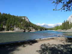 BanffNatlPk158 (alicia.garbelman) Tags: canada alberta rockymountains bowriver banffnationalpark