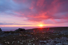 (Unreal sunset) (Kirill & K) Tags: flowers sunset summer cloud sun sunlight mountain nature stone landscape sunrays anemones          bashkiria  iremel    southernural