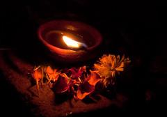 Illuminating the flower petals and flower.jpg (melissaenderle) Tags: festival celebration diwali travel vizag candle andhrapradesh asia light