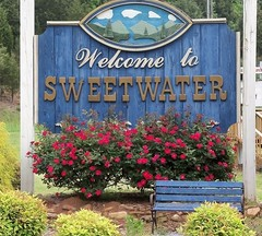 SWEETWATER, TENNESSEE (~ Cindy~) Tags: roses mountains sign bench tn tennessee flowerbed welcome quaint sweetwater hbm commonfolk