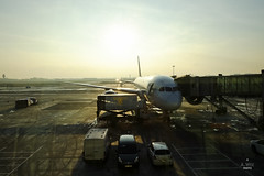 LOT 787 in the sunset (A. Wee) Tags: sunset airport lot poland warsaw chopin boeing  787  dreamliner  lotpolish