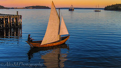 The Sailor (The Happy Traveller) Tags: sea sunrisesunset scenery sunset sailing boating