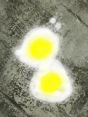 Fried Eggs on Pavement (willywayne) Tags: eggs egg pavement artist digital art breakfast road hot sizzling fried artwork simple yoke yokes yellow white food snack yolk yolks