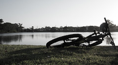 A Mountain Bike Without Any Mountains (David-Jennings) Tags: mtb bike mountain gold coast queensland giant dim