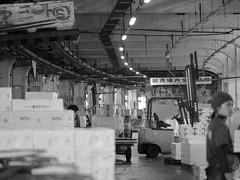IMGP8202 (SY Huang) Tags: bw fish japan tokyo market tsukiji   fishmarket  tsukijifishmarket