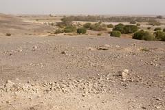 IMG_0131 (Alex Brey) Tags: castle archaeology architecture ruins desert ruin mosque medieval jordan khan residence islamic qasr amra caravanserai qusayramra umayyad quṣayrʿamra