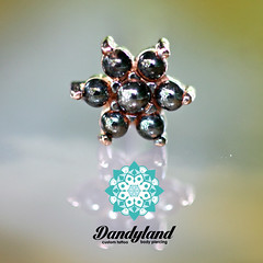 Black and Rose Gold Flower