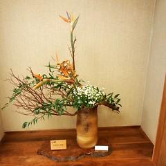 Emi's  #ikebana at Keiro