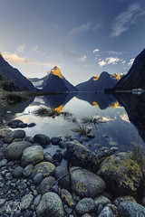 First ray over the Sound (bgspix) Tags: blue newzealand sun mountain lake reflection beach rock sunrise landscape mirror reflect shore nz sound fjord milford bluehour mitre mitrepeak canoneos5dmarkiii ef1635mmf4lisusm
