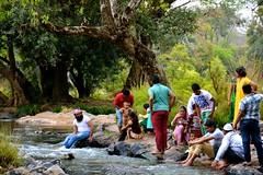 DSC_0189_2 (drs.sarajevo) Tags: india karnataka madikeri kaveririver dubareelephantpark