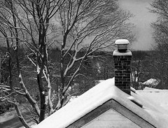 Up on the roof - Explored (mejas) Tags: ri trees roof winter chimney blackandwhite bw white snow black cold tree brick rooftop snowstorm rhodeisland