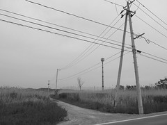 Ishinomaki #4  Kadonowaki path (MEG/SDJ) Tags: blackandwhite bw japan way path olympus silence  miyagi    ishinomaki    kadonowaki xz10