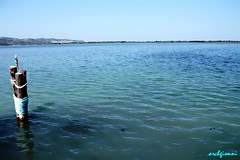 mare d'orbetello (archgionni) Tags: blue sea italy panorama water reflections italia mare waves tuscany environment toscana acqua azzurro riflessi onde ambiente totalphoto christiangroup