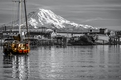 Rainier-Sailboat-BW-Color (Rob Green - SmokingPit.com) Tags: old 2 bw white mountain snow black color building green art beach sailboat port canon volcano bay harbor pier boat washington dock artwork warm thea sailing mt pacific northwest artistic mark shoreline vivid vessel rob historic cap ii shore maritime rainier sound 7d boating sail wa waters inlet tacoma mast commencement splash shipping foss range cascade rigging puget waterway tahoma undustrial mahestic