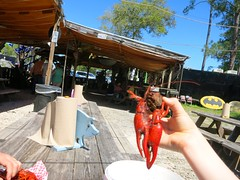 IMG_2311 (David Danzig) Tags: mississippi spring break shed crawfish blues bbq april joint the 2016