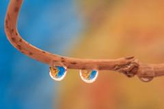 Mauretanien (Fotos4RR) Tags: mirror drops globe drop waterdrops spiegelung wassertropfen tropfen mauritania mauretanien globus mirroring