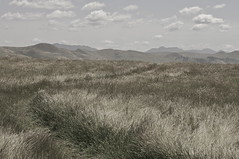 A Path Less Walked (blueteeth) Tags: california mountains clouds landscape solitude path meadow trail distance tallgrass