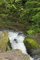 IMG_0386 (rob02190) Tags: franklloydwright pa fallingwater