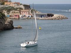 A la sortie du Vieux Port (Hlne_D) Tags: sea mer france port harbor boat marseille paca provence bateau mediterraneansea vieuxport voilier mditerrane sailingboat bouchesdurhne mermditerrane provencealpesctedazur hlned