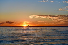 Sailing into Sunset! (ineedathis,The older I get the more fun I have....) Tags: sunset sea summer sky sun newyork beach nature water clouds sailboat reflections golden huntington horizon longisland hobartbeach nikond750
