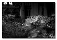 I say I say, my bishop has no nose... (Descended from Ding the Devil) Tags: bw dof devon exeter sonya7mkii sonyalphadslr beyondbokeh bishop blackandwhite bokeh carving cathedral church depthoffield fullframe grafitti mirrorless monochrome photoborder selectivefocus tomb stpeter