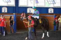 "2016-07-15 (10) r1 Kevin Gomez on #6 American Progress (JLeeFleenor) Tags: photos photography md maryland marylandhorseracing jockey جُوكِي ""赛马骑师"" jinete ""競馬騎手"" dżokej jocheu คนขี่ม้าแข่ง jóquei žokej kilparatsastaja rennreiter fantino ""경마 기수"" жокей jokey người horses thoroughbreds equine equestrian cheval cavalo cavallo cavall caballo pferd paard perd hevonen hest hestur cal kon konj beygir capall ceffyl cuddy yarraman faras alogo soos kuda uma pfeerd koin حصان кон 马 häst άλογο סוס घोड़ा 馬 koń лошадь horsepeople outside outdoors"