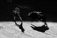 Sol y Sombra (Fotomondeo) Tags: blackandwhite bull alicante bullfighter toros bullfight toro bullring matador plazadetoros alacant corridadetoros fogueres hogueras hoguerasdesanjuan fujifilmxm1