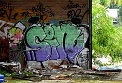 graffiti breukelen (wojofoto) Tags: graffiti breukelen nederland netherland holland wojofoto wolfgangjosten sin