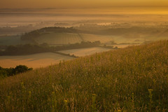 Toast With Marmite and Scrambled Egg (steve.geliot) Tags: firle sunrise warm mist south downs