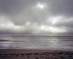 North Beach, Point Reyes (sheelkapur) Tags: plaubel makina 67 mediumformat film ilovefilm ishootfilm filmisnotdead analog gameoftones ektar iso100 kodak 6x7 nikkor 80mm f28