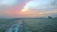 Pink Sunset - 2 (lemoncat1) Tags: cruiseship sea sunset colorfulsunset horizon pinkclouds pinksunset